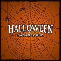 Halloween-achtergrond met Web van spin. vector