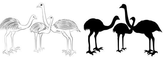 emu silhouet vector