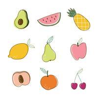 Set van zomer fruit vector