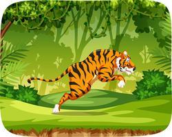 Tijger in jungle scène vector