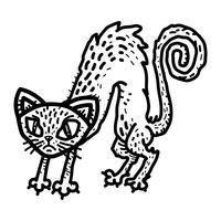 geschrokken kat