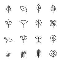 Blad pictogrammenset vector. Natuur en symbool concept. Dunne lijn pictogramthema. Witte geïsoleerde achtergrond. Illustratie vector. vector