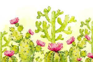 Natuurlijke cactus als achtergrond vector