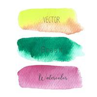 Reeks van de kleurrijke borstel strijkt waterverf op witte baclground, Vectorillustratie. vector