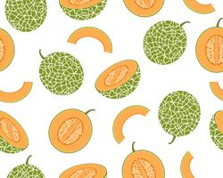 Naadloos patroon van verse kantaloepmeloen die op witte achtergrond wordt geïsoleerd - Vectorillustratie vector