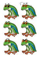 Groene kikkers met verschillende gezichtsuitdrukkingen