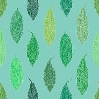 Groene bittere pompoen naadloze achtergrond. vector