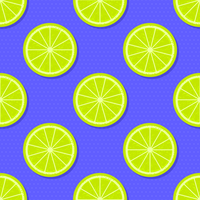 Plakjes Lime zomer achtergrond vector