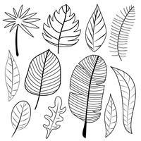 Bladeren Doodle Vector Set. Vector illustratie.