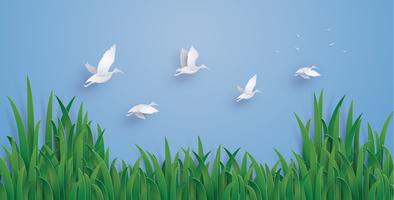 De eenden vliegen de lucht in