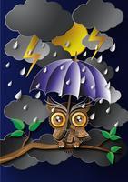 Uil die een paraplu in de regen houdt.