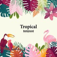 Van de palmbladenvogels van de zomer tropisch banner de vogels vectorbeeld.