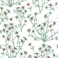 Naadloze bloemmotief. Bloem achtergrond. Floreer behang met bessen en bloemen. vector