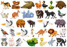 Set van wilde dieren