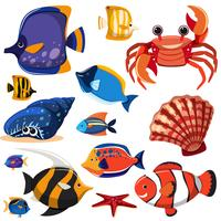 Een reeks zeedieren