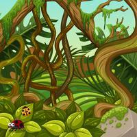 Een groen oerwoudlandschap