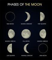 De fasen van de maan. Print vector