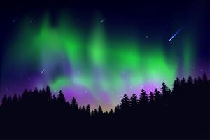 Aurora Dat gebeurde 's nachts in de lucht met de sterren aan de hemel vector