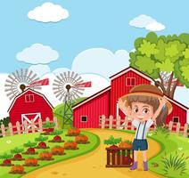 Een boer oogst vetgetable