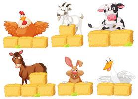Set van boerderijdieren