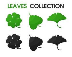 Mooie vormen van bladeren en schaduwen