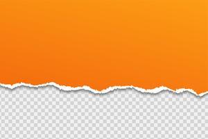 Papier of rand scheuren Op een transparante achtergrond. vector
