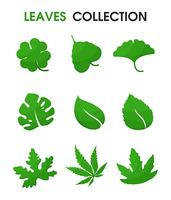 Mooie vormen van bladeren. Vector illustratie.