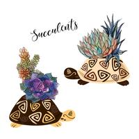 Een boeket van vetplanten in een bloempot in de vorm van een schildpad. Afbeeldingen en aquarel vlekken. Vector.