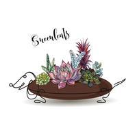 Vetplanten. Samenstelling van bloemen in een bloempot in de vorm van een hondtekkel. Graphics. Waterverf. Vector.
