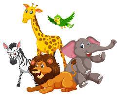 Groep wilde dieren vector