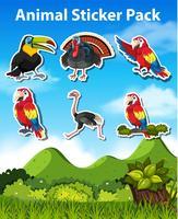 Set van vogel sticker vector