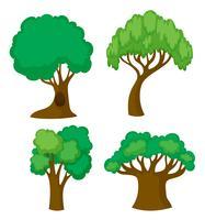 Vier verschillende vormen van bomen