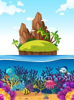 Scène met eiland en vissen onder de zee vector