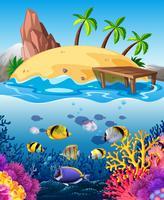 Vissen onderwater zwemmen en eiland vector