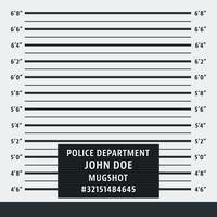 Politie mugshot achtergrond vector