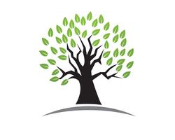 Boom groene mensen identiteitskaart vector logo sjabloon