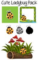 Leuk lady bug pack vector
