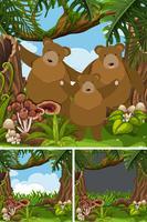 Grizzlybeerfamilie in de wildernis vector
