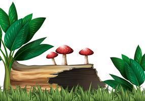 Tuinscène met logboek en paddestoelen