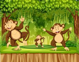 Groep van aap in het regenwoud vector