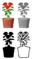 Set van roos in pot vector