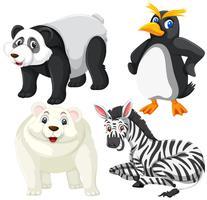 Set van isoalted dieren