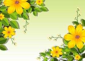 Gele bloemenscène als achtergrond