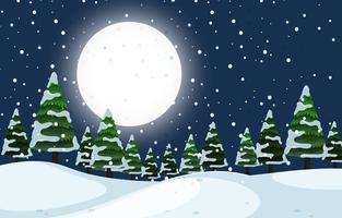 Een nachtelijke nachtscène in de winter
