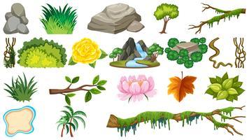 Set van natuurlijke objecten vector