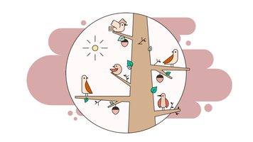 de vogels vector