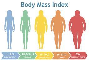 De index vectorillustratie van de lichaamsmassa van te zwaar aan uiterst zwaarlijvig. Vrouwensilhouetten met verschillende zwaarlijvigheidsgraden.