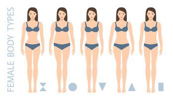 Set van vrouwelijke lichaamsvorm types - driehoek, peer, zandloper, appel, afgerond, omgekeerde driehoek, rechthoek. Vrouw figuur types. Vector illustratie.