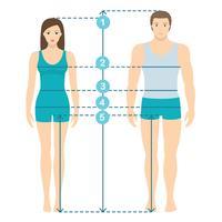 Vectorillustratie van man en vrouwen in volledige lengte met metingslijnen van lichaamsparameters. Man en vrouw maten metingen. Menselijke lichaamsafmetingen en verhoudingen. Plat ontwerp.