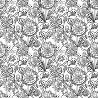 Vector naadloos zwart-wit bloemenpatroon. Hand getrokken doodle bloemen.